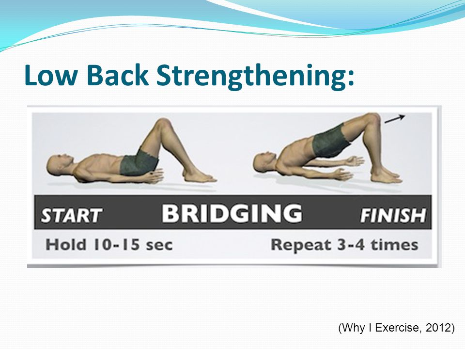 Prevention of back pain and treatments ppt download for Healthwise fish oil