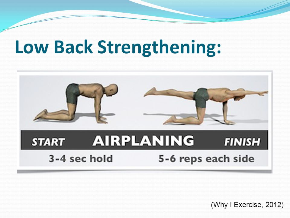 Low Back Strengthening: