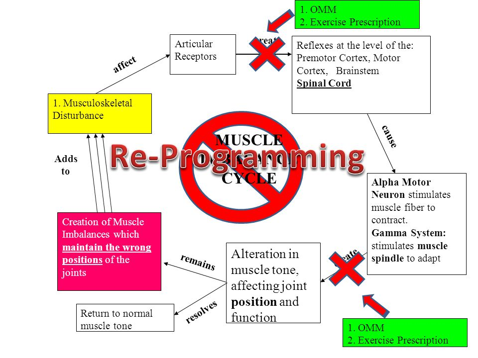Re-Programming MUSCLE IMBALANCE CYCLE