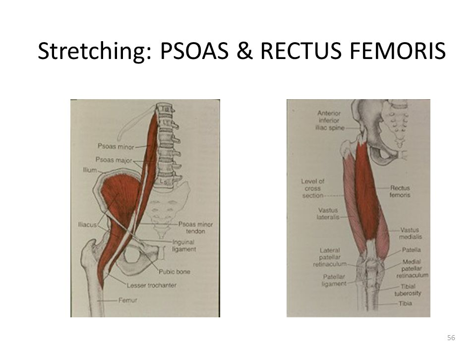 Stretching: PSOAS & RECTUS FEMORIS