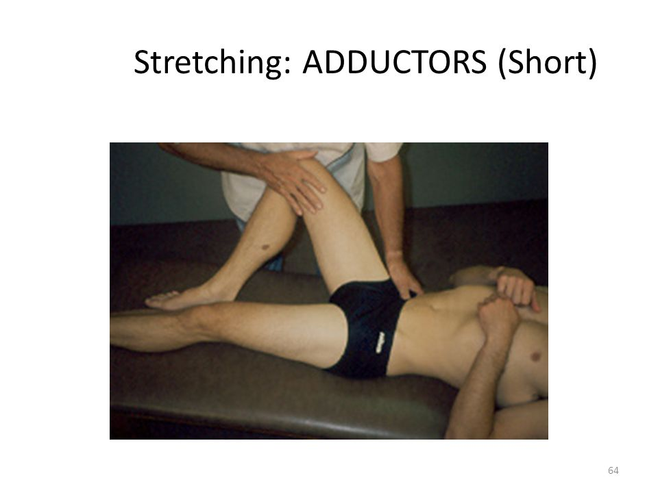 Stretching: ADDUCTORS (Short)