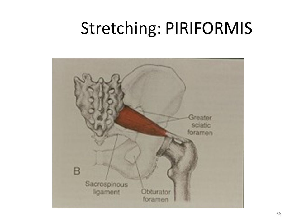 Stretching: PIRIFORMIS