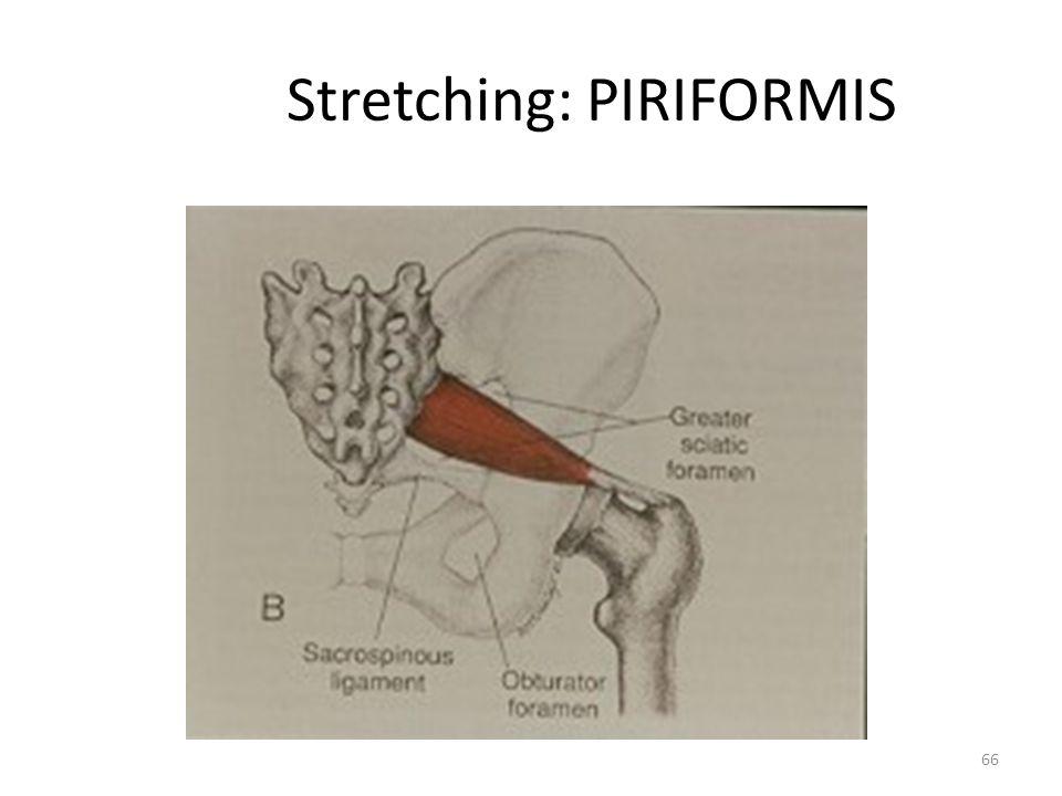 Stretching: PIRIFORMIS