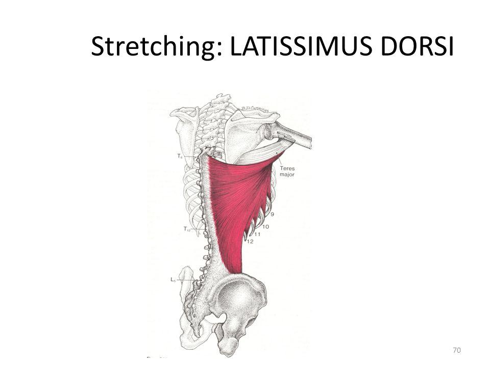 Stretching: LATISSIMUS DORSI