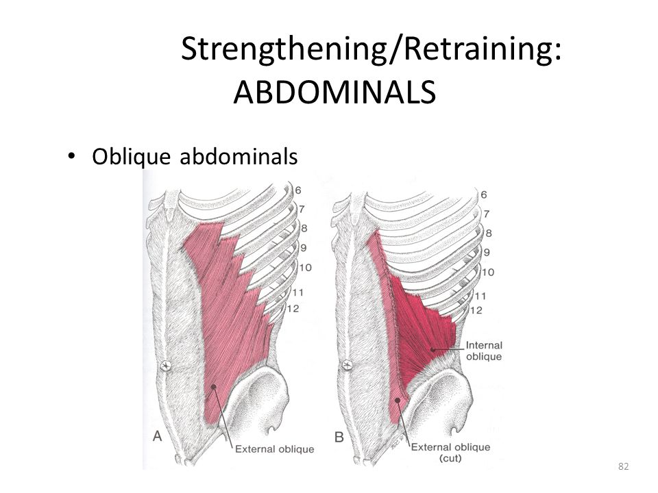 Strengthening/Retraining: ABDOMINALS