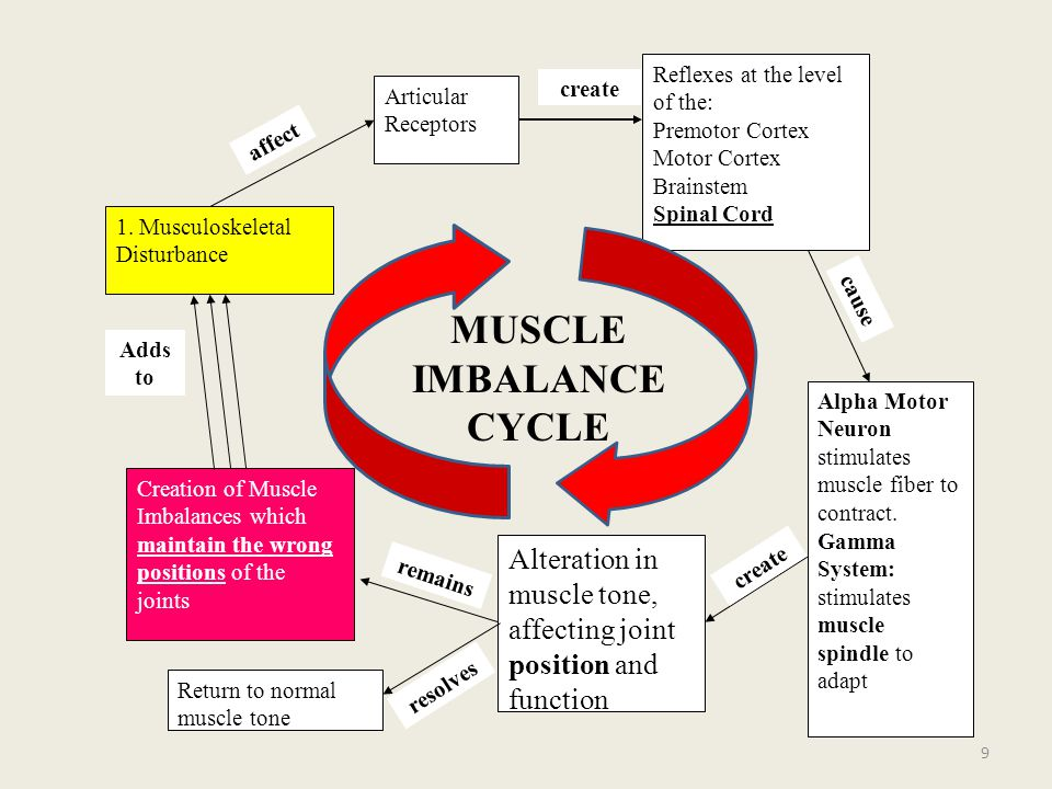MUSCLE IMBALANCE CYCLE