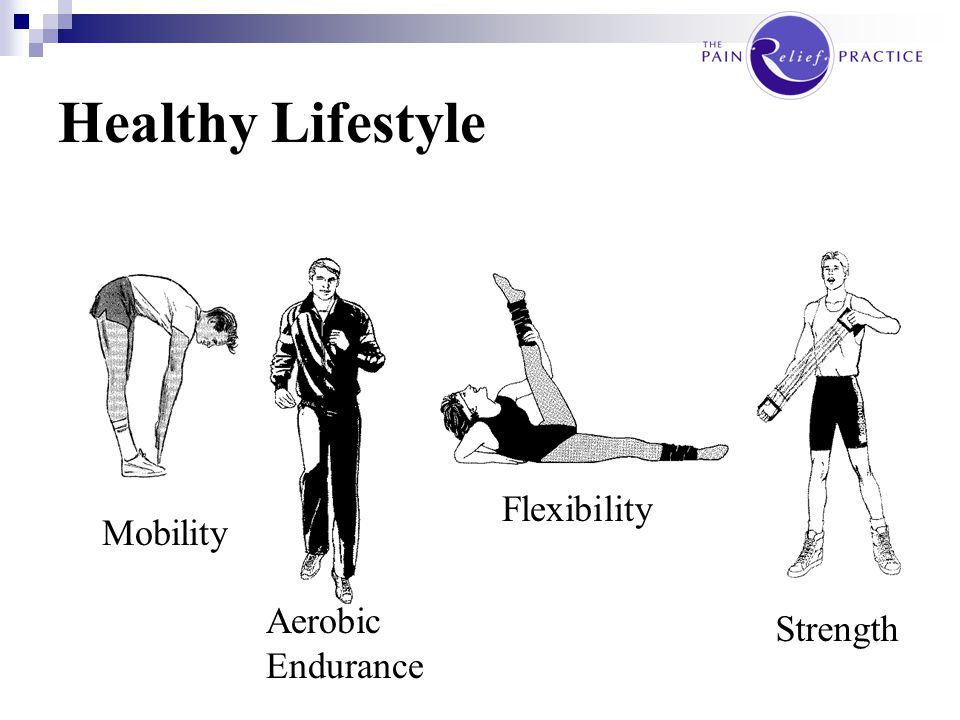 Healthy Lifestyle Flexibility Mobility Aerobic Endurance Strength