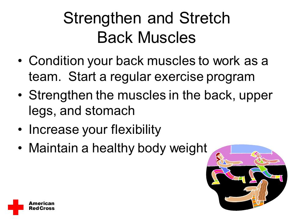 Strengthen and Stretch Back Muscles