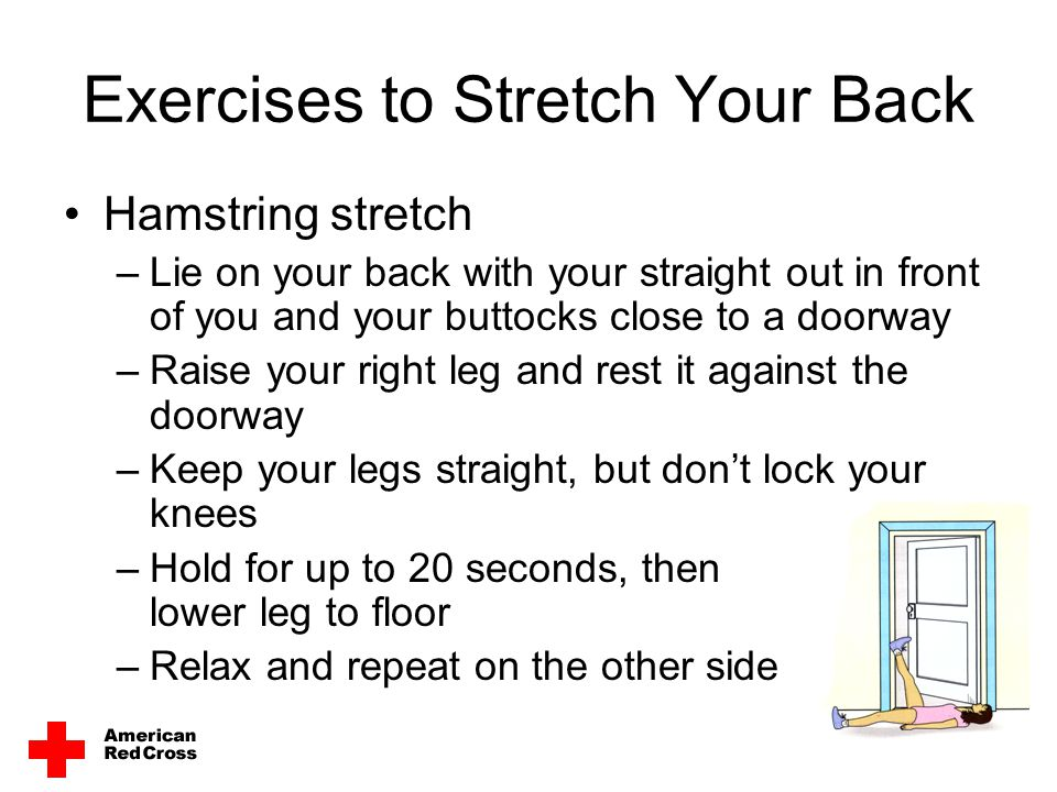 Exercises to Stretch Your Back