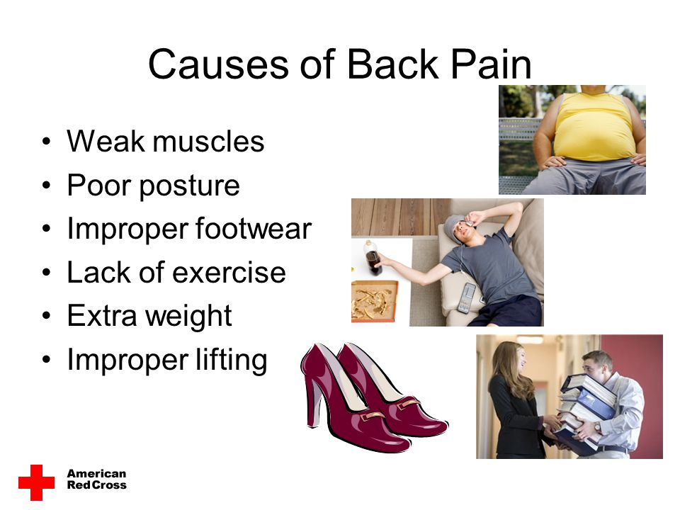 Causes of Back Pain Weak muscles Poor posture Improper footwear