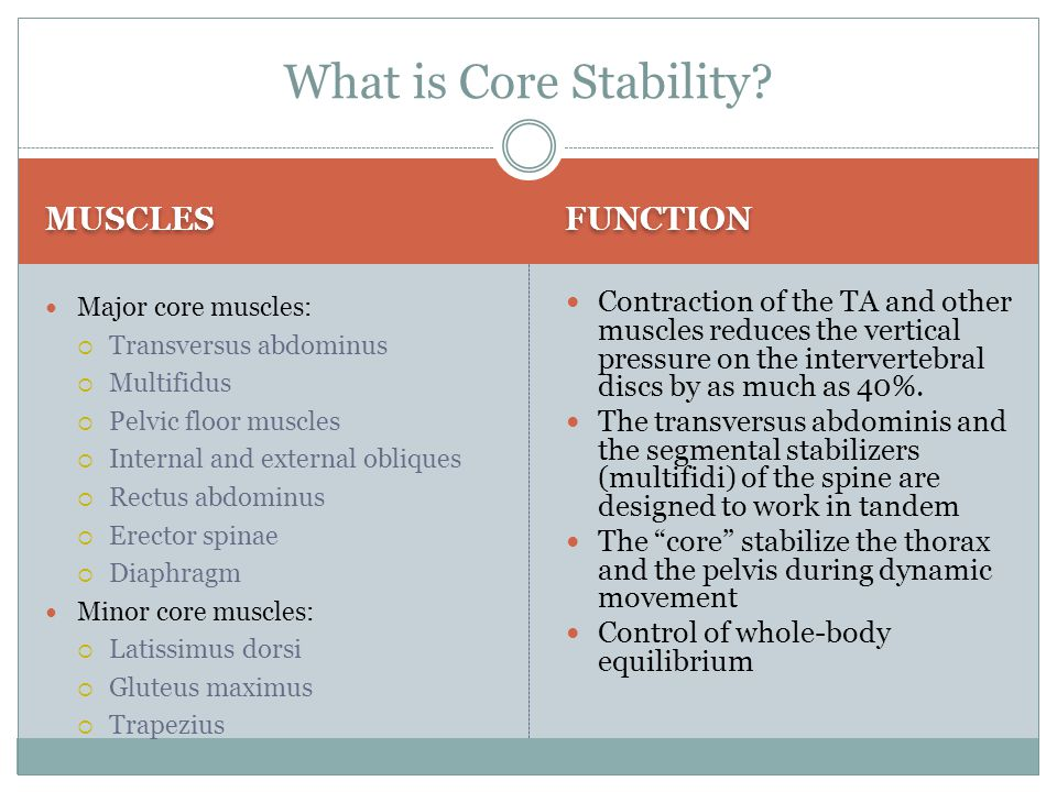 What is Core Stability MUSCLES FUNCTION