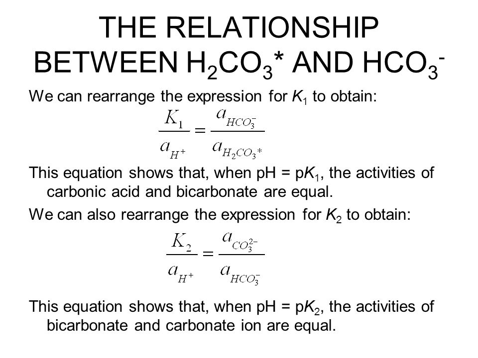 THE RELATIONSHIP BETWEEN H2CO3* AND HCO3-