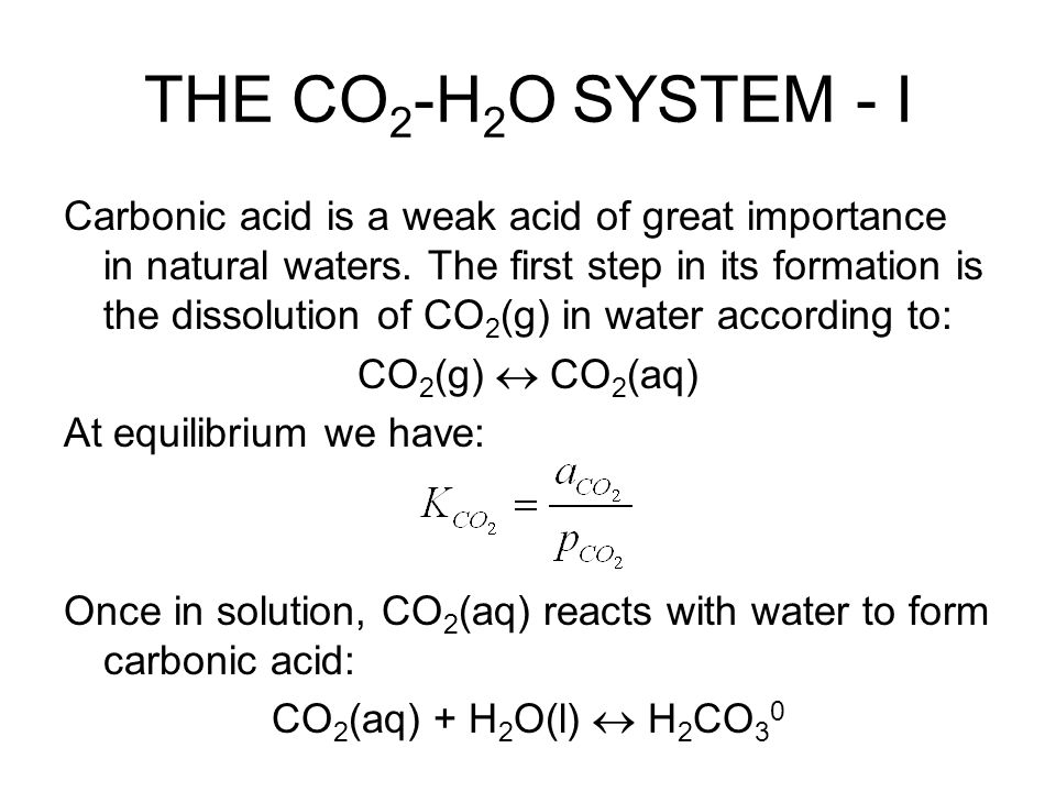 THE CO2-H2O SYSTEM - I