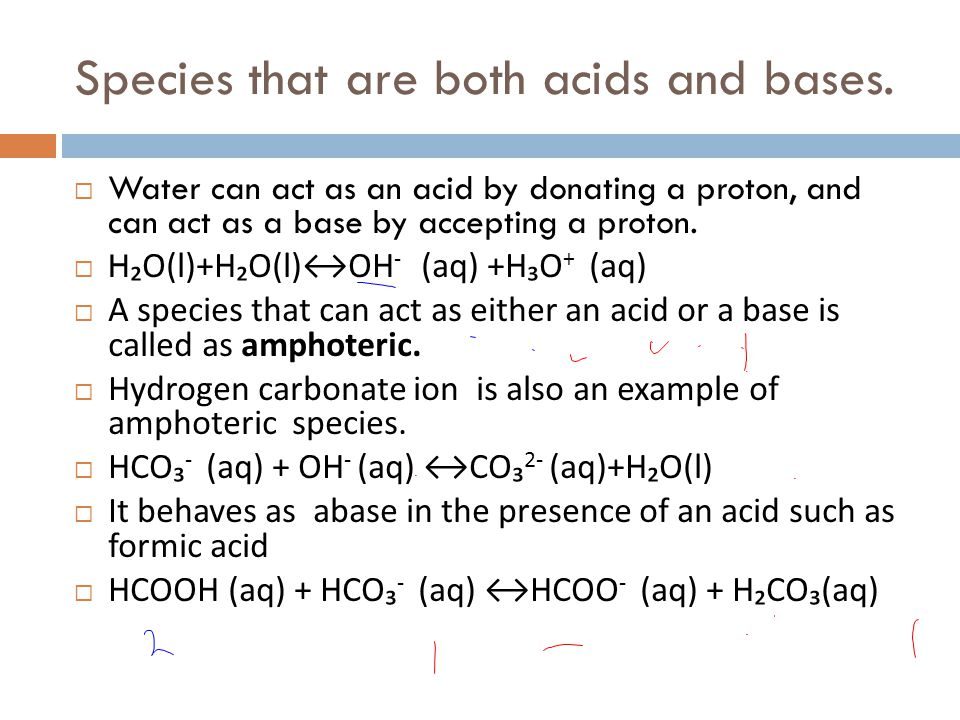 Species that are both acids and bases.