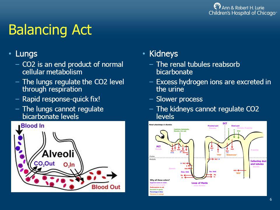 Balancing Act Lungs Kidneys