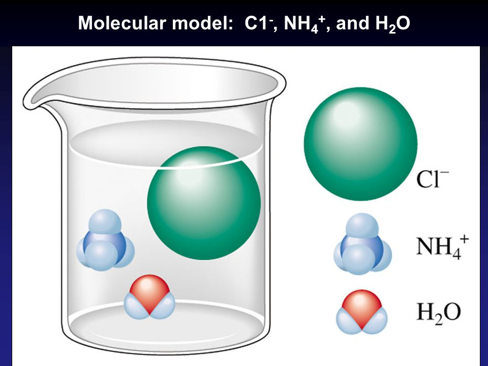 Molecular model: C1-, NH4+, and H2O