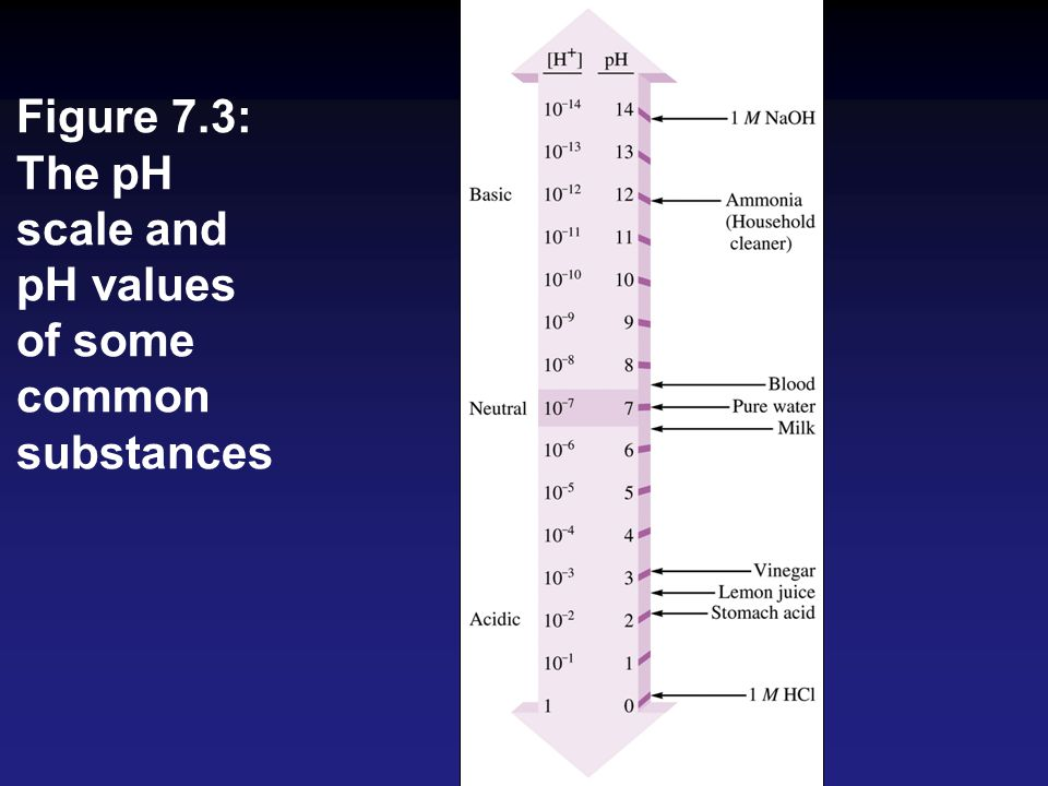 Figure 7.3: The pH scale and pH values of some common substances