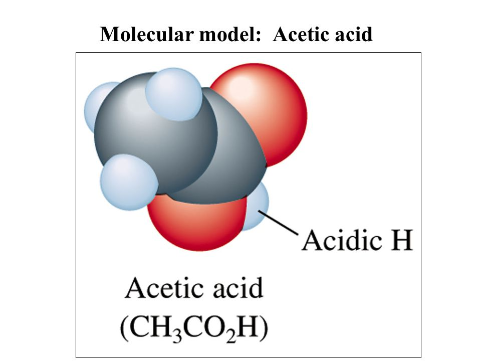 Molecular model: Acetic acid