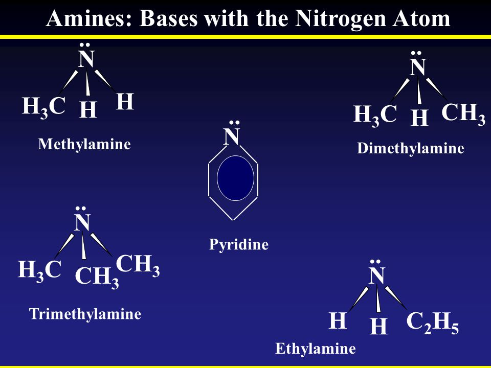 Amines: Bases with the Nitrogen Atom .. ..