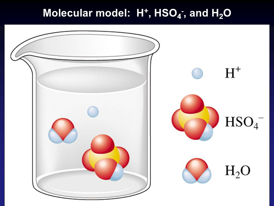 Molecular model: H+, HSO4-, and H2O