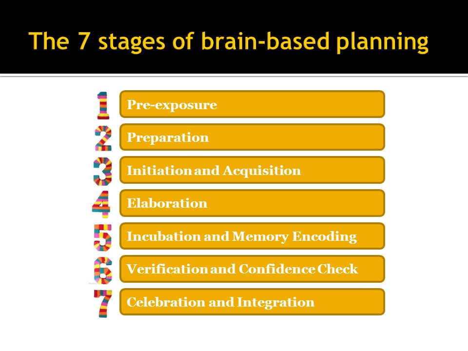 The 7 stages of brain-based planning