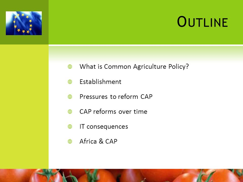 Outline What is Common Agriculture Policy Establishment