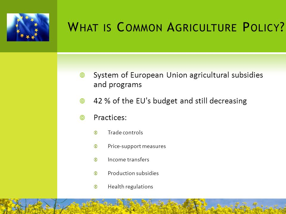 What is Common Agriculture Policy