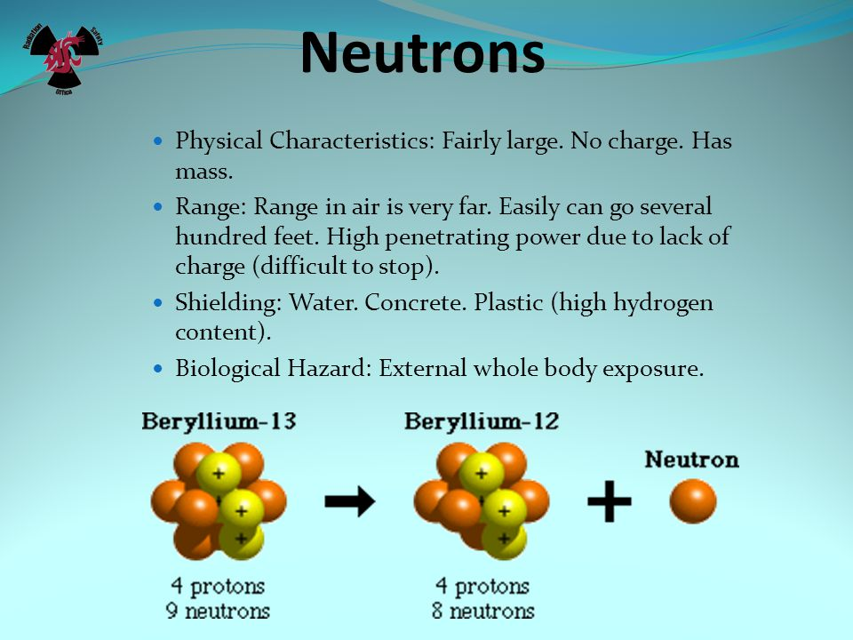 Neutrons Physical Characteristics: Fairly large. No charge. Has mass.