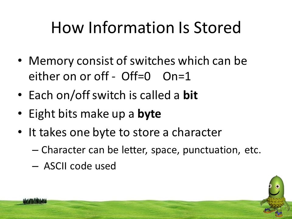 How Information Is Stored