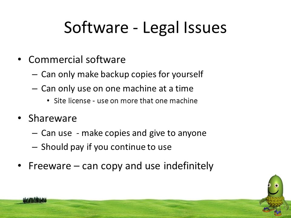 Software - Legal Issues