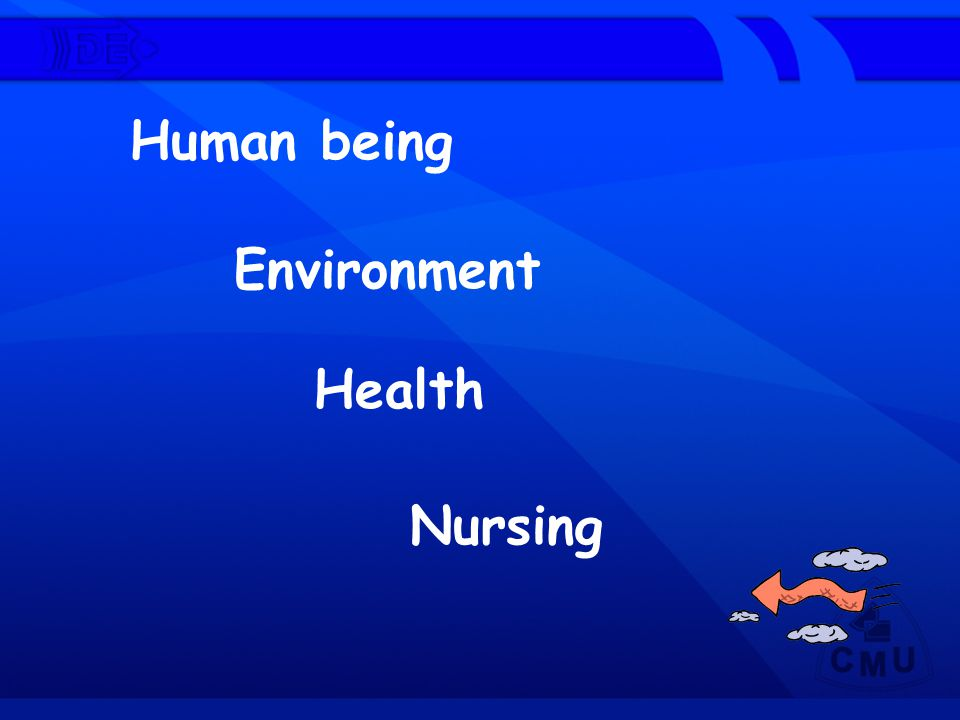Human being Environment Health Nursing