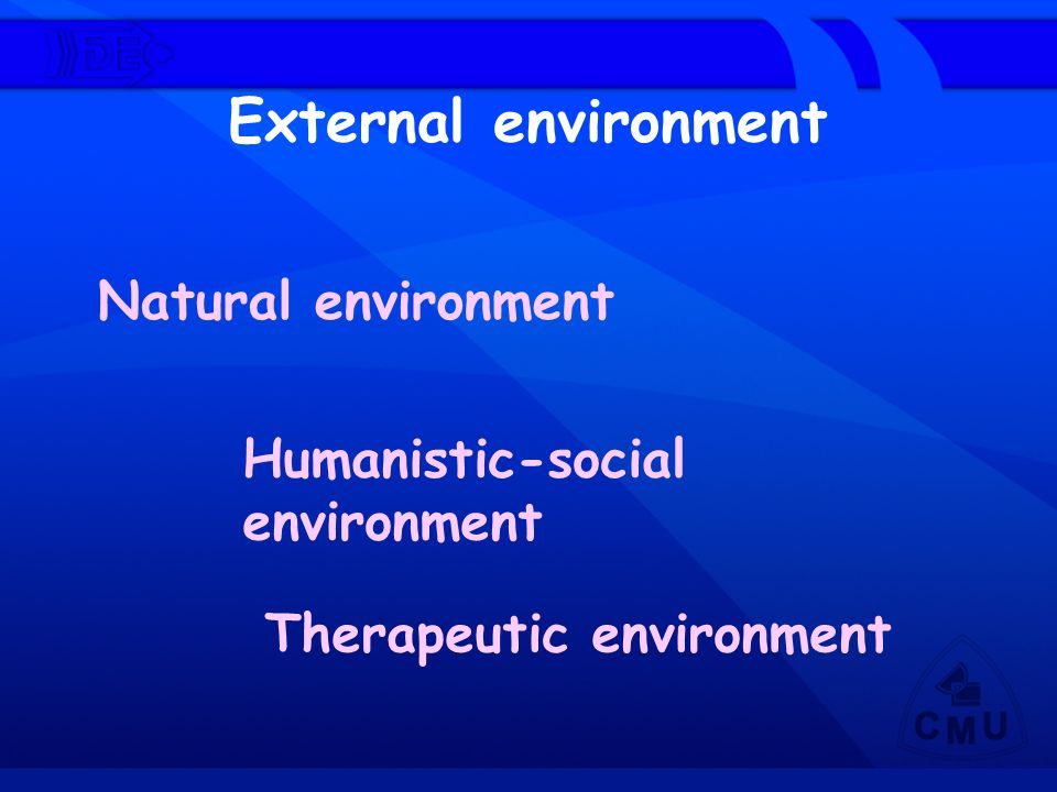 External environment Humanistic-social environment