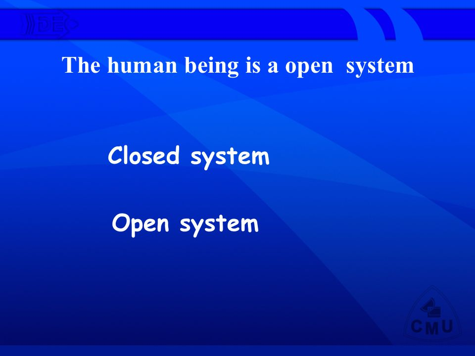 The human being is a open system