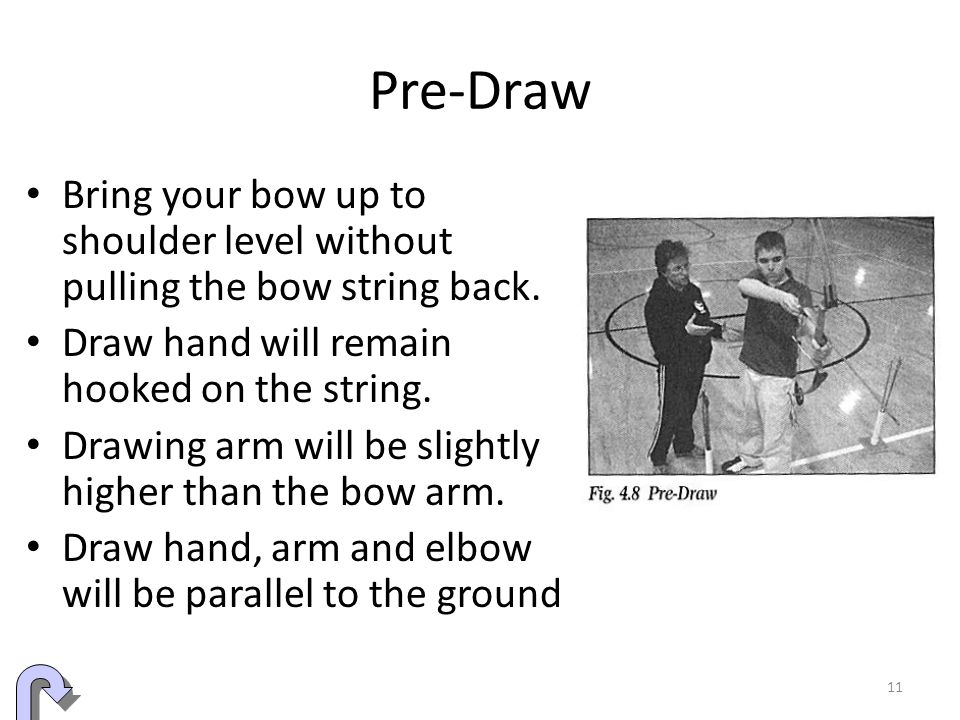 Pre-Draw Bring your bow up to shoulder level without pulling the bow string back. Draw hand will remain hooked on the string.