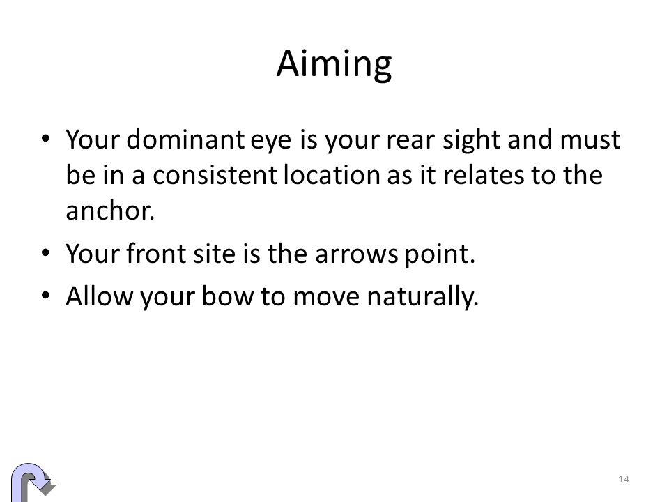 Aiming Your dominant eye is your rear sight and must be in a consistent location as it relates to the anchor.