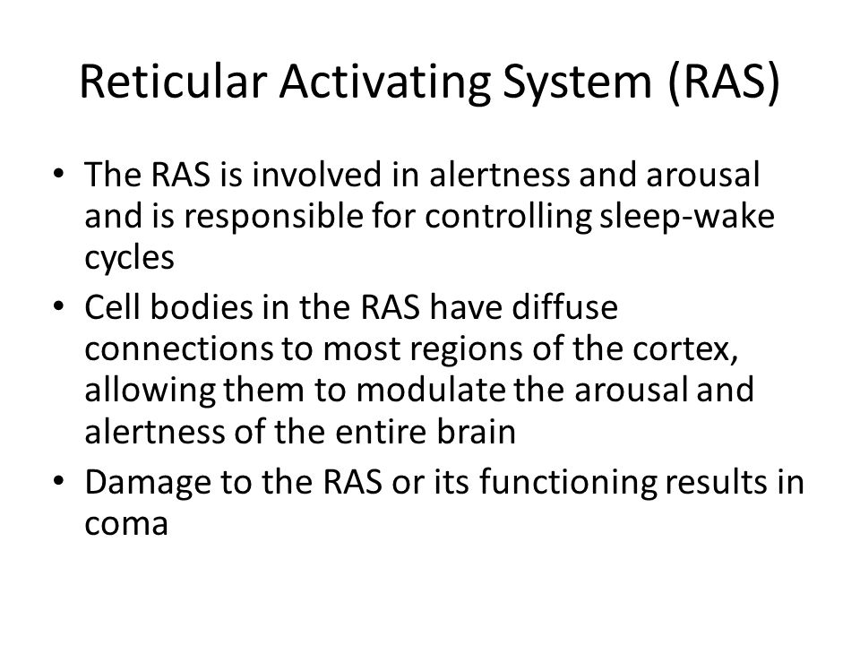 Reticular Activating System (RAS)