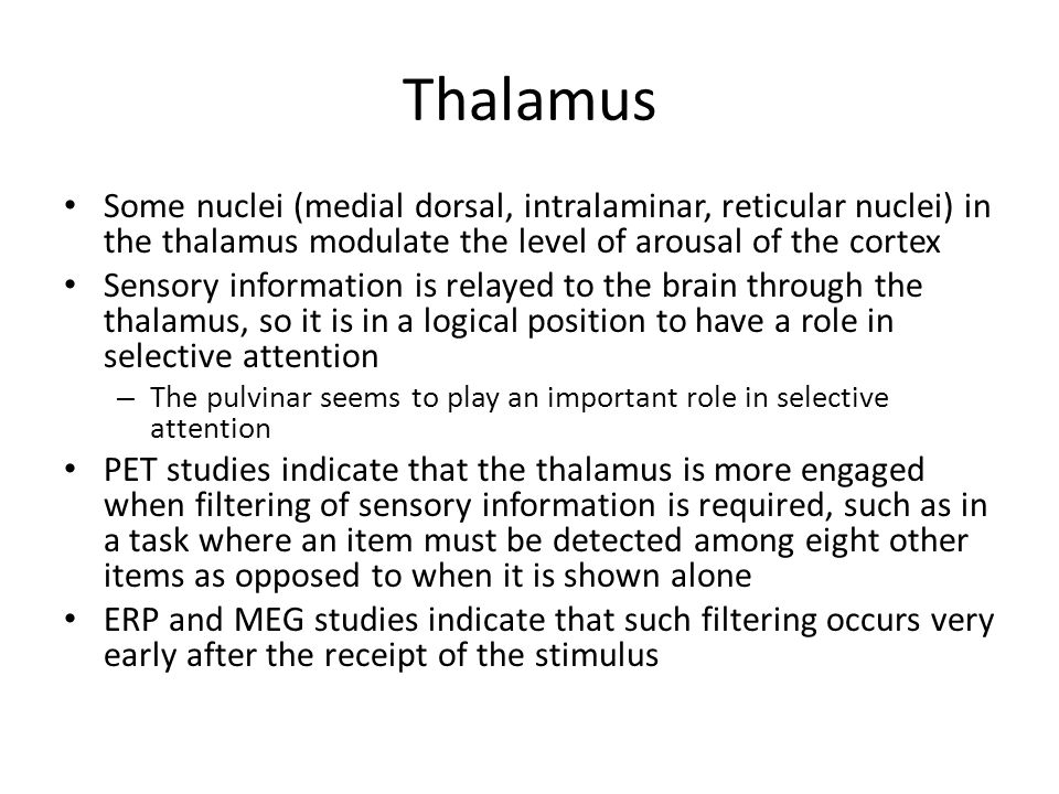 Thalamus Some nuclei (medial dorsal, intralaminar, reticular nuclei) in the thalamus modulate the level of arousal of the cortex.