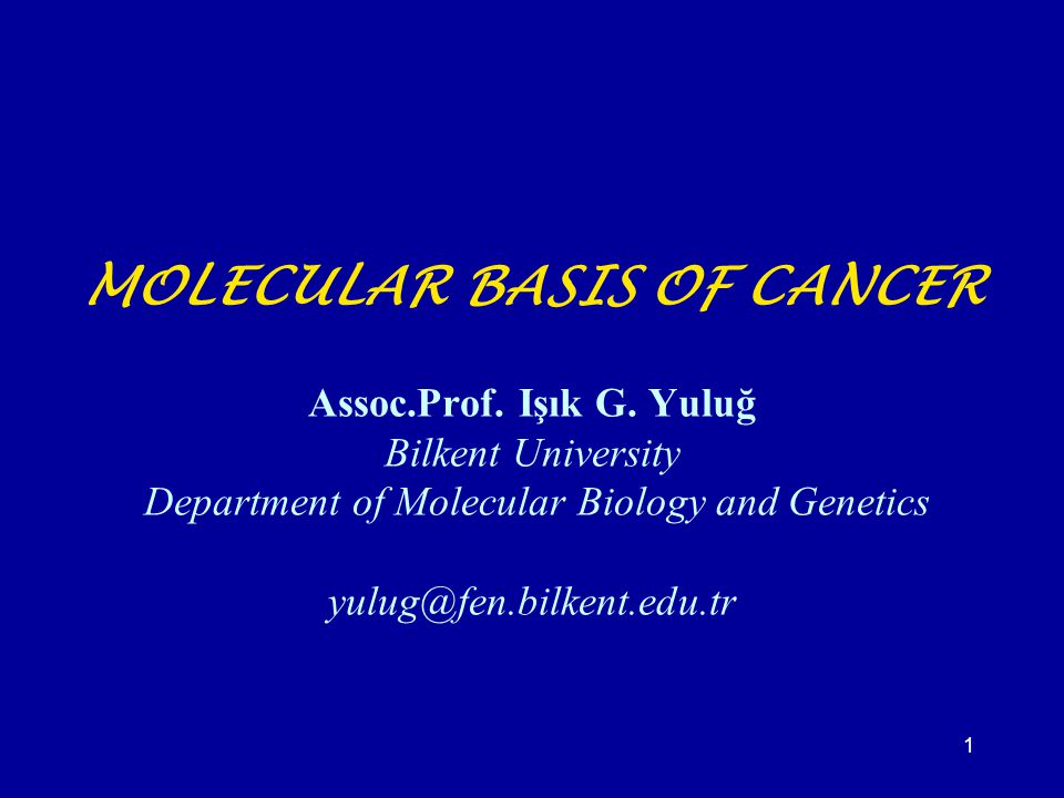 MOLECULAR BASIS OF CANCER Assoc. Prof. Işık G