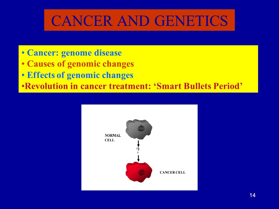 CANCER AND GENETICS Cancer: genome disease Causes of genomic changes