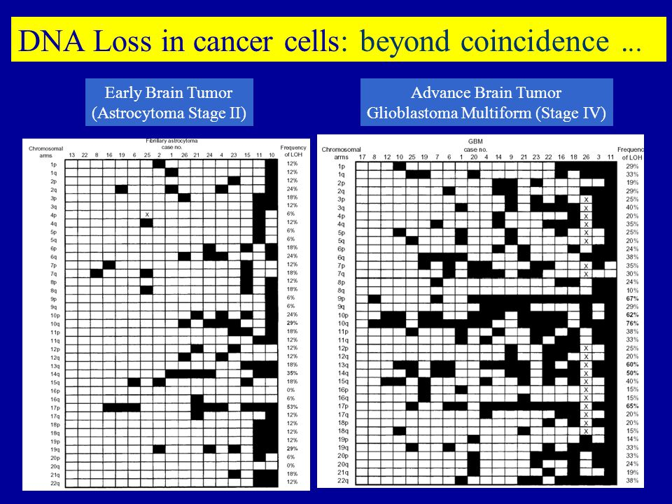 DNA Loss in cancer cells: beyond coincidence ...