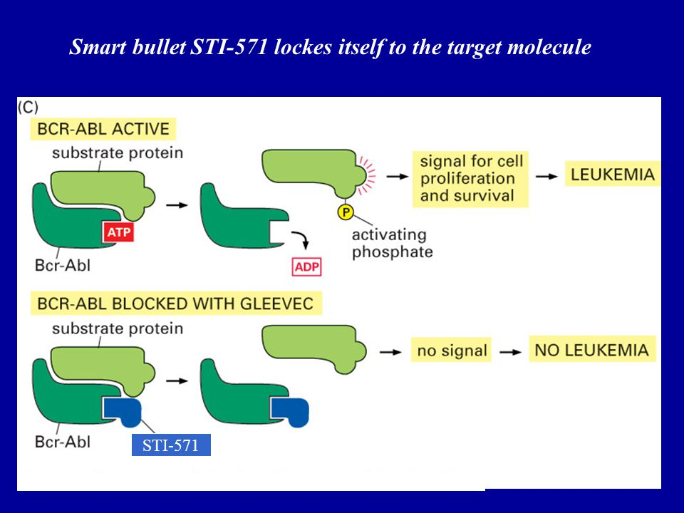 Smart bullet STI-571 lockes itself to the target molecule