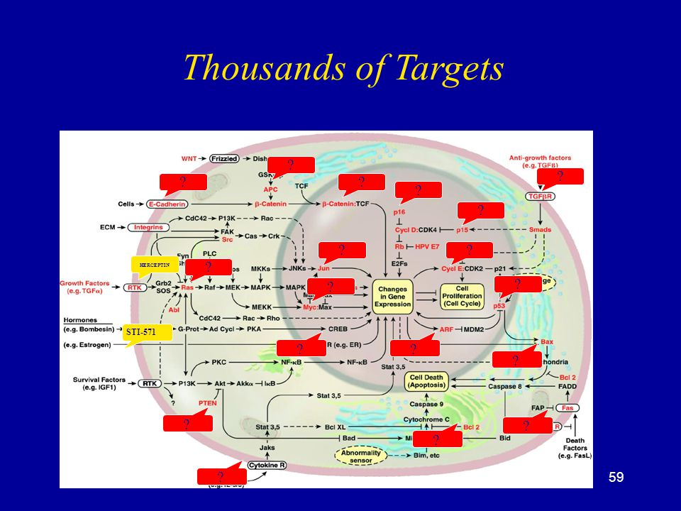 Thousands of Targets STI-571