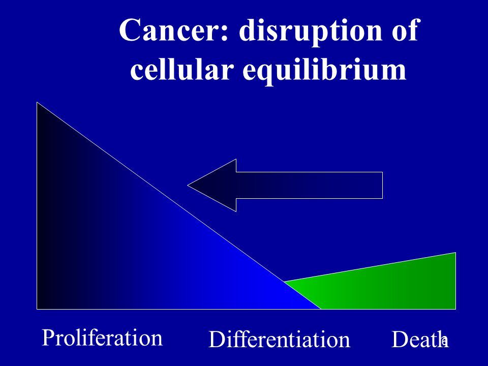 Cancer: disruption of cellular equilibrium