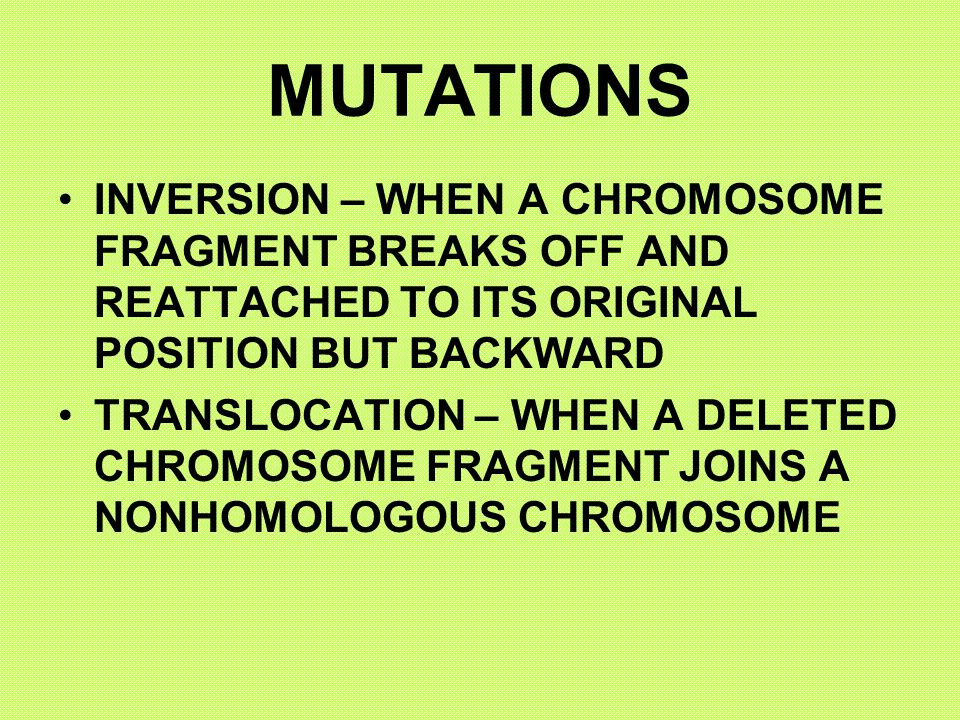 MUTATIONS INVERSION – WHEN A CHROMOSOME FRAGMENT BREAKS OFF AND REATTACHED TO ITS ORIGINAL POSITION BUT BACKWARD.
