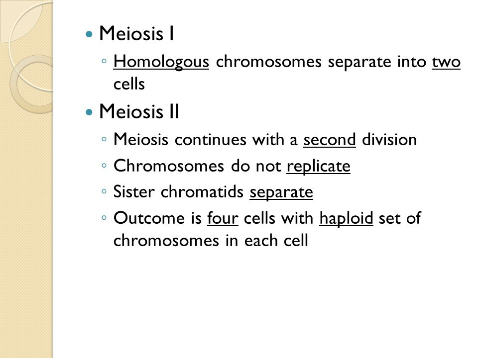 Meiosis I Meiosis II Homologous chromosomes separate into two cells