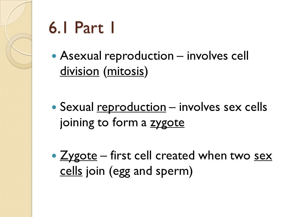6.1 Part 1 Asexual reproduction – involves cell division (mitosis)
