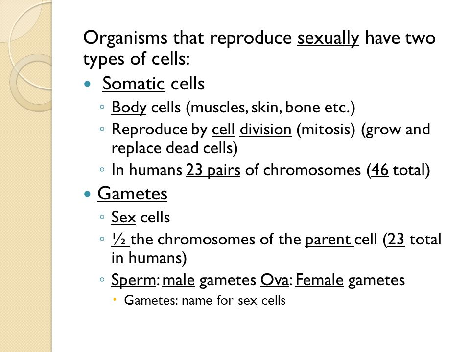 Organisms that reproduce sexually have two types of cells: