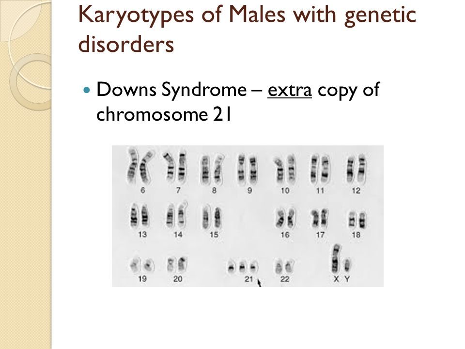 Karyotypes of Males with genetic disorders