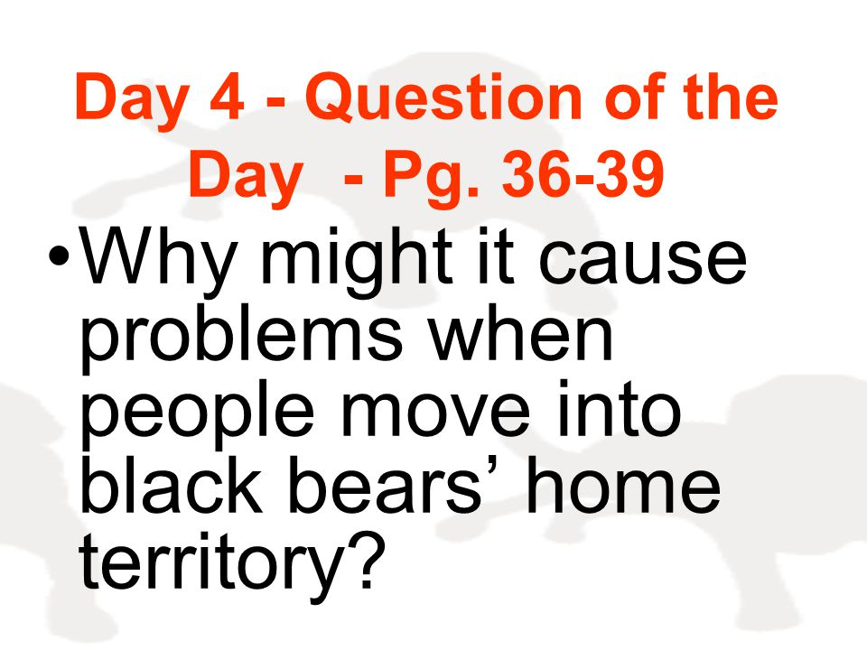 Day 4 - Question of the Day - Pg. 36-39