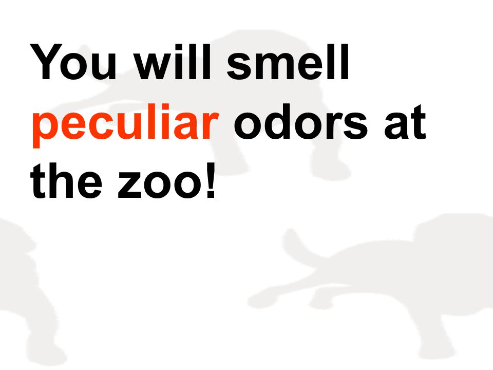 You will smell peculiar odors at the zoo!